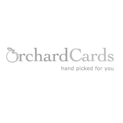 AC-571 - Ruby 40th wedding anniversary card illustrated by Alex Clark with red roses and a heart shaped garland hanging on a door